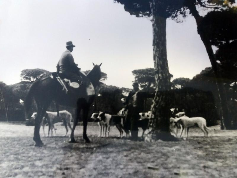 Rehala Manuel Puig década 1940. Doñana